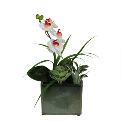 "12"" Spring Time Easter Orchid and Succulents Artificial Floral Arrangement"