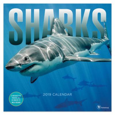 Tf Publishing 2019 Sharks Wall Calendar