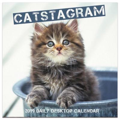 Tf Publishing 2019 Catstagram Daily Desktop Calendar