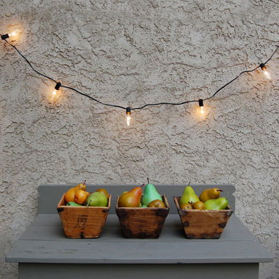 Electric String Lights (10 Lights)