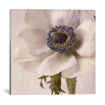 Linen Flower II by Symposium Design Canvas Print