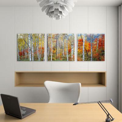 Fall Trees; Shinhodaka; Gifu; Japan by Panoramic Images Canvas Print
