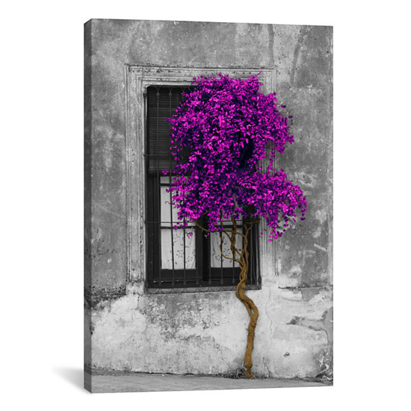 Tree in Front of Window Purple Pop Color Pop by Panoramic Images Canvas Print