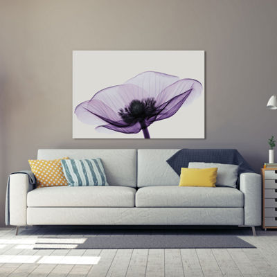 Anemone II by Robert Coop Canvas Print
