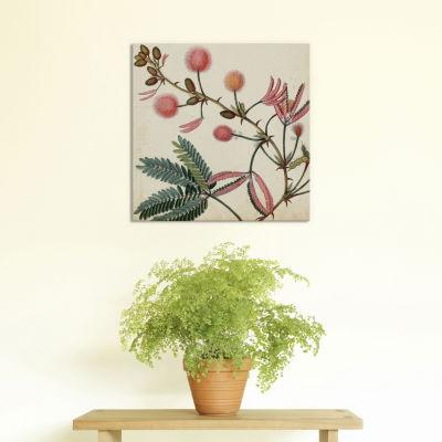 Garden Bounty IV by Vision Studio Canvas Print