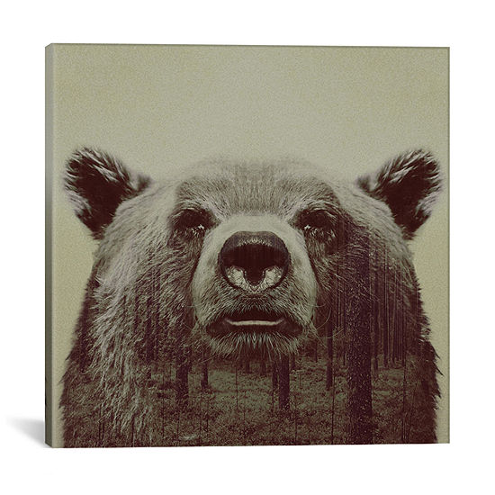 Bear II by Andreas Lie Canvas Print