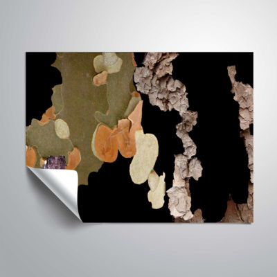 Brushstone Modern Wooden Planet Removable Wall Decal