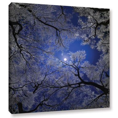 Brushstone Moonlight Trees Gallery Wrapped CanvasWall Art