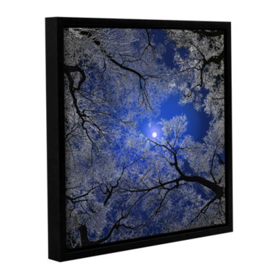 Brushstone Moonlight Trees Gallery Wrapped Floater-Framed Canvas Wall Art