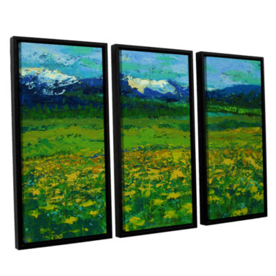 Brushstone Mountain Meadow (Wildflowers) 3-pc. Floater Framed Canvas Wall Art