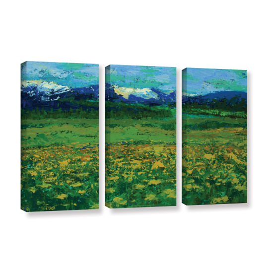 Brushstone Mountain Meadow (Wildflowers) 3-pc. Gallery Wrapped Canvas Wall Art