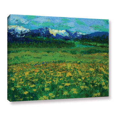 Brushstone Mountain Meadow (Wildflowers) Gallery Wrapped Canvas Wall Art
