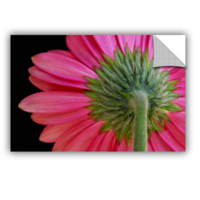 Brushstone Shy Flowers Removable Wall Decal