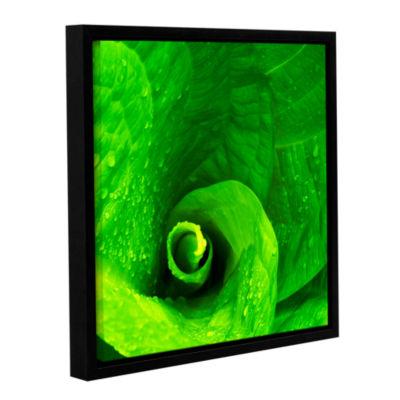 Brushstone Skunk Swirl Gallery Wrapped Floater-Framed Canvas Wall Art