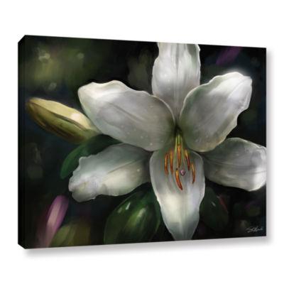 Brushstone Star Gazer Gallery Wrapped Canvas WallArt