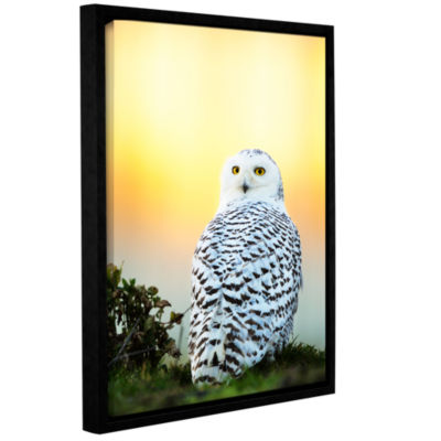 Brushstone Snowy Owl Sunset Gallery Wrapped Floater-Framed Canvas Wall Art