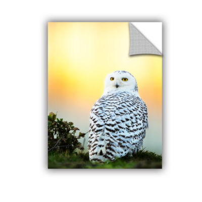 Brushstone Snowy Owl Sunset Removable Wall Decal