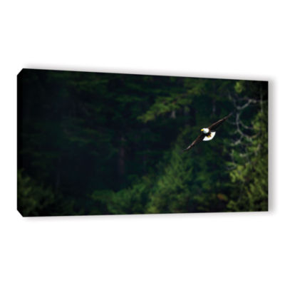 Brushstone Soaring Bald Eagle Gallery Wrapped Canvas Wall Art