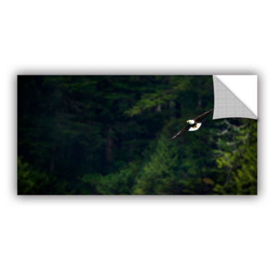 Brushstone Soaring Bald Eagle Removable Wall Decal