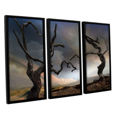 Brushstone Solitary Together 3-pc. Floater FramedCanvas Wall Art