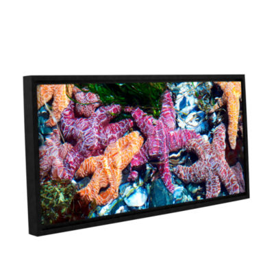 Brushstone Seastar Pano Gallery Wrapped Floater-Framed Canvas Wall Art