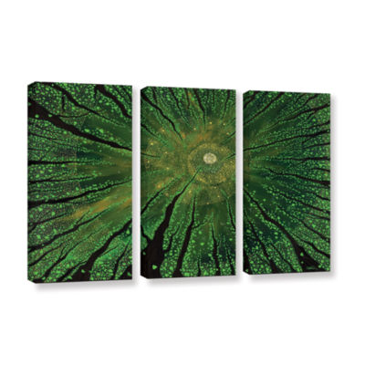 Brushstone Summer Shudder 3-pc. Gallery Wrapped Canvas Wall Art