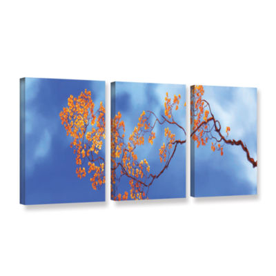 Bougainvillae 3-pc. Gallery Wrapped Canvas Wall Art