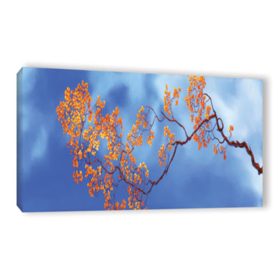 Bougainvillae Gallery Wrapped Canvas Wall Art