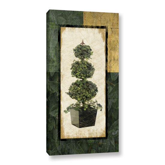 Brushstone Topiary I Gallery Wrapped Canvas Wall Art