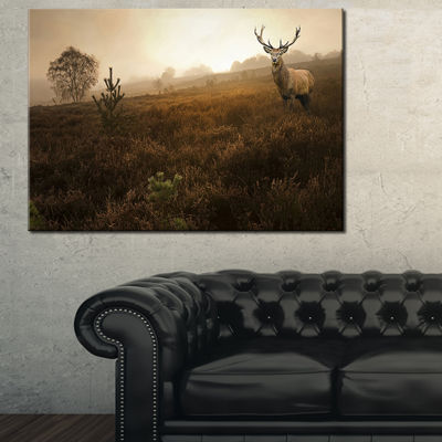 Designart Mist Forest With Red Deer Stag LandscapePhoto Canvas Art Print - 3 Panels