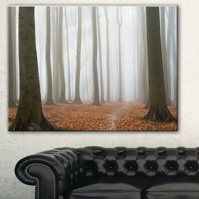 Designart Misty Autumn Beech Forest Landscape Photography Canvas Print - 3 Panels