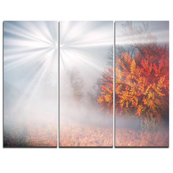 Designart Misty Sun In Red Autumn Forest LandscapePhotography Canvas Print - 3 Panels