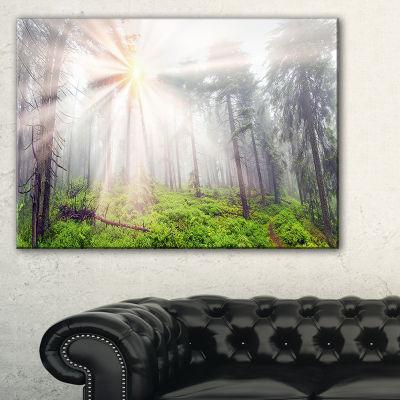 Designart Misty Sunrise In Forest Landscape Photography Canvas Art Print