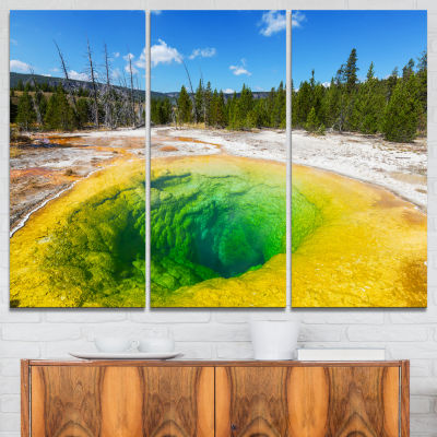 Designart Morning Glory Pool Close Up Landscape Photography Canvas Print - 3 Panels
