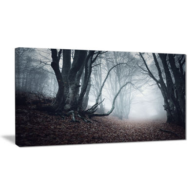 Designart Mysterious Fairytale Foggy Wood Landscape Photography Canvas Print