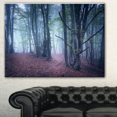 Designart Mysterious Fairytale Wood Landscape Photography Canvas Print - 3 Panels