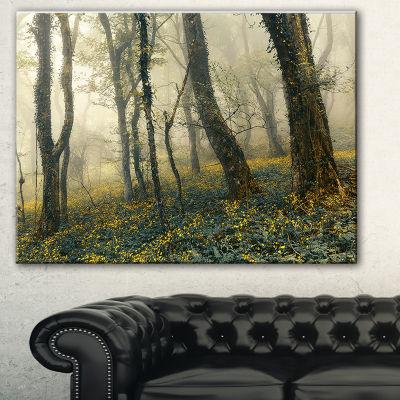Design Art Mysterious Forest In Fog Landscape PhotoCanvas Art Print
