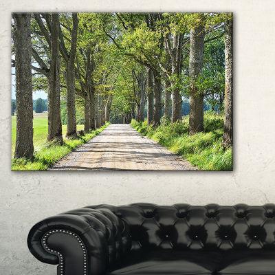 Designart Old Road Through Alley Landscape Photography Canvas Art Print - 3 Panels
