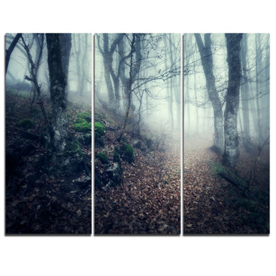 Designart Old Style Path In Forest Landscape Photography Canvas Print - 3 Panels