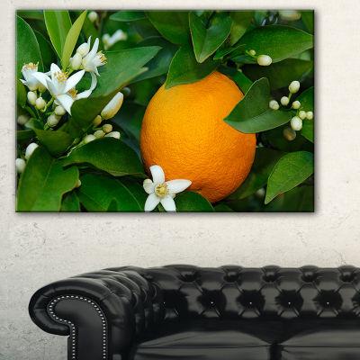 Designart Orange Blossom Portrait Canvas Art Print- 3 Panels
