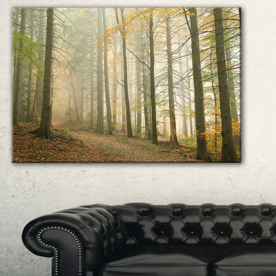 Designart Path In Misty Autumn Forest Landscape Photography Canvas Print - 3 Panels