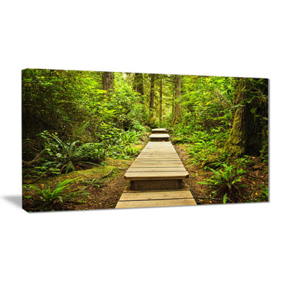 Designart Path In Temperate Rainforest LandscapePhotography Canvas Print