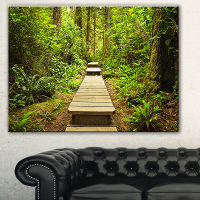 Design Art Path In Temperate Rainforest LandscapePhotography Canvas Print - 3 Panels