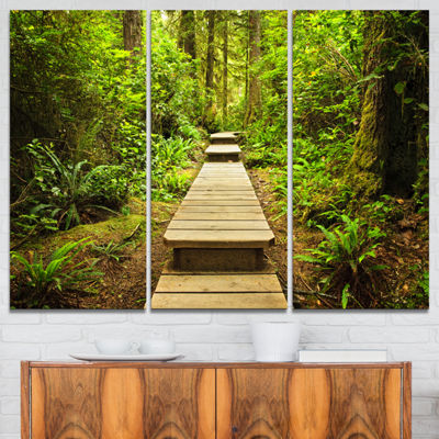 Designart Path In Temperate Rainforest LandscapePhotography Canvas Print - 3 Panels