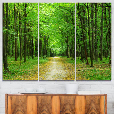 Designart Pathway In Green Forest Landscape Photography Canvas Print - 3 Panels
