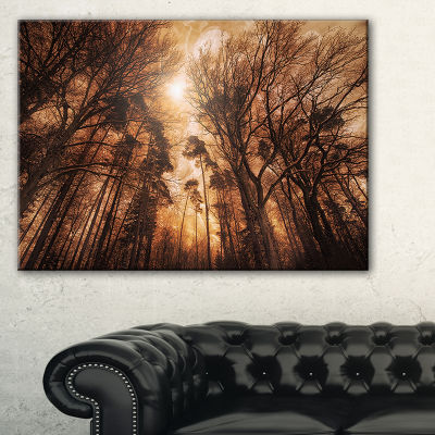 Designart Picturesque Autumn Forest Landscape Photography Canvas Print