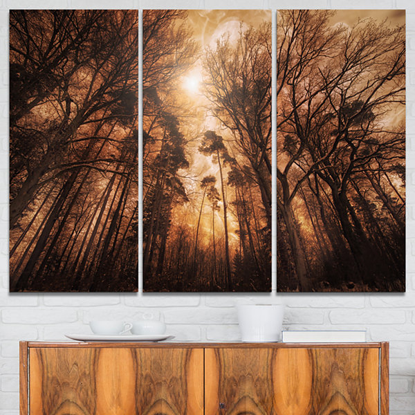 Designart Picturesque Autumn Forest Landscape Photography Canvas Print - 3 Panels