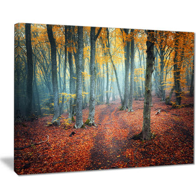 Designart Red And Yellow Autumn Forest LandscapePhotography Canvas Print