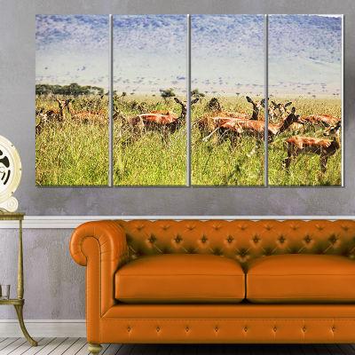 Designart Large Giraffe in Savannah Landscape Artwork Canvas- 4 Panels