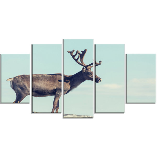 Designart Large Reindeer in Norway Abstract Wrapped Canvas Art Print - 5 Panels